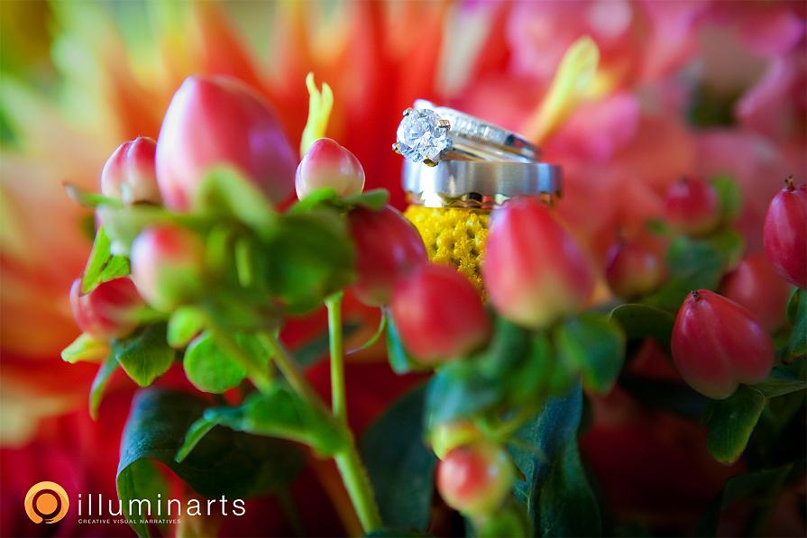 p2_IlluminArts_E&G_Wedding_Telluride